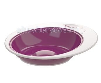 Beaba evolutive ellipse plum 41275