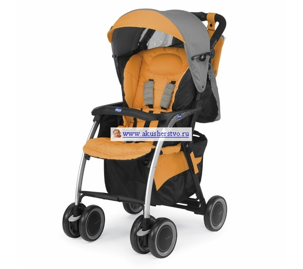 Прогулочные коляски Chicco Simplicity Top