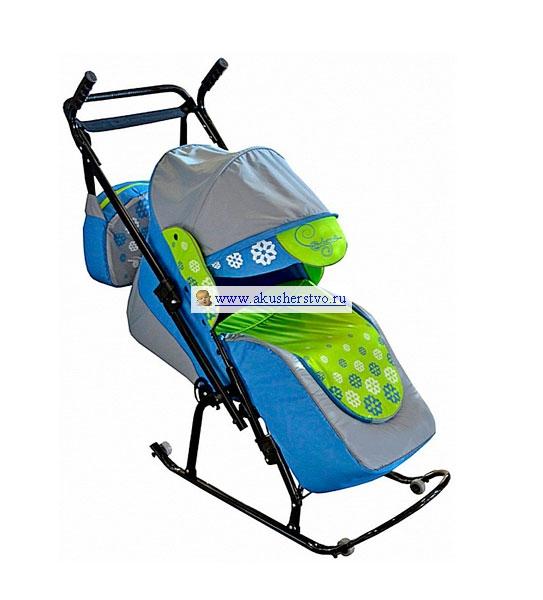 Санки-коляски R-Toys Вьюга 8-Р1
